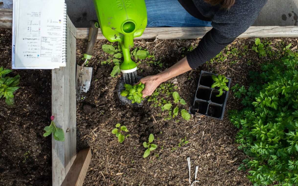 An overhead view of someone gardening